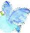 img-birds2