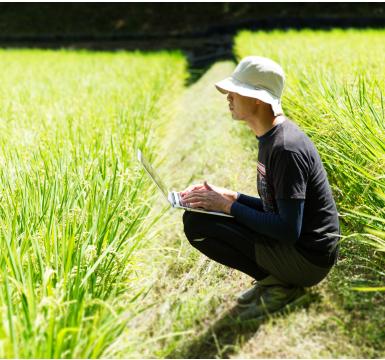 緑の仕事研究所は「緑の仕事」のさまざまな情報をお届けします|緑に関わる仕事をわたしたちは 造園、農業、林業 ととらえて「緑の仕事」と呼んでいます。 あなたに合った「緑の仕事」を探してみませんか。